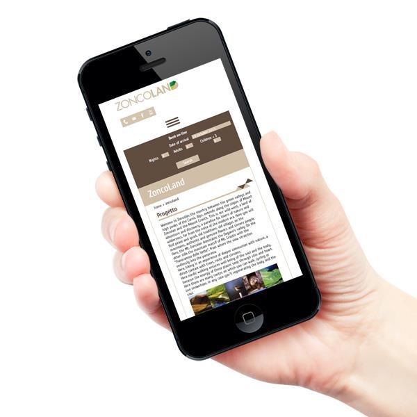 grafica-e-responsive-sito-web