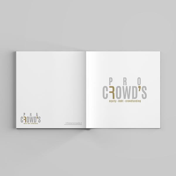 pro_crowds_company_profile